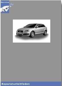 Audi A3 8P  - 2,0l TFSI Motor Mechanik - Reparaturleitfaden