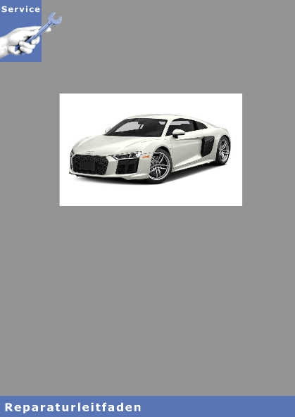 Audi R8 Achsantrieb vorn 0D4 - Reparaturanleitung