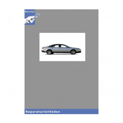 Audi A6 4B (97-05) 8-Zyl. Motor 4,2l 5V Mechanik Kette - Reparaturleitfaden
