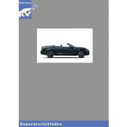 Audi A5 Cabriolet (17>) Karosserie Instandsetzung - Reparaturleitfaden