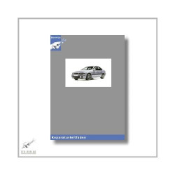BMW 5er E39 (95-04) 2,5l Dieselmotor - Werkstatthandbuch