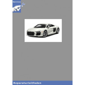 Audi R8 7 Gang Doppelkupllungsgetriebe 0BZ - Reparaturanleitung