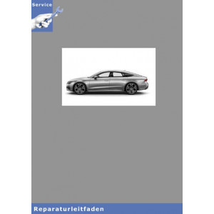 Audi A7 Instandsetzung 6 Zyl. TDI Common Rail 3,0l Motor - Reparaturleitfaden