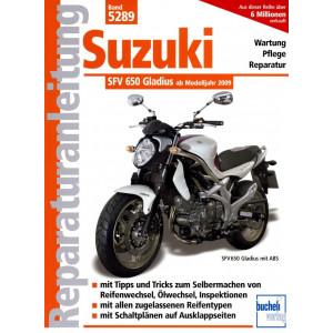 Suzuki SFV 650 Gladius V2 (2009-2016) - Reparaturanleitung