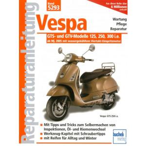 Vespa GTS / GTV 125, 250, 300 ccm Modelle (2005>) Reparaturanleitung
