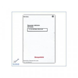 Skoda Fabia (>00) 1.9 47 kW SDI - ASY - Motor Mechanik - Reparaturleitfaden - Werkstatthandbuch