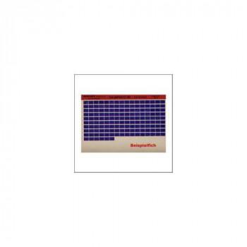 Ducati Monster 600 - 2000 Microfich